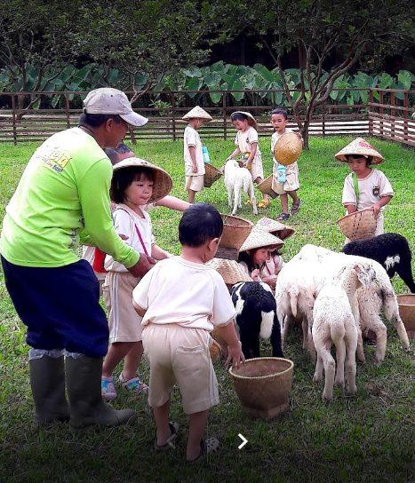 manfaat-mengajak-anak-anak-ke-agrowisata